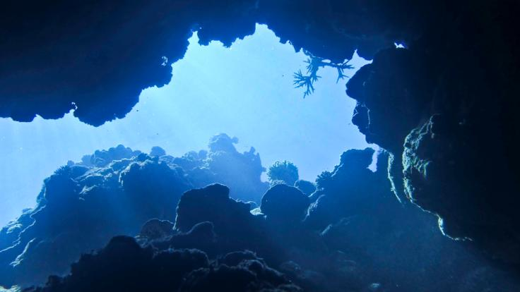 Cave diving on the Great Barrier Reef