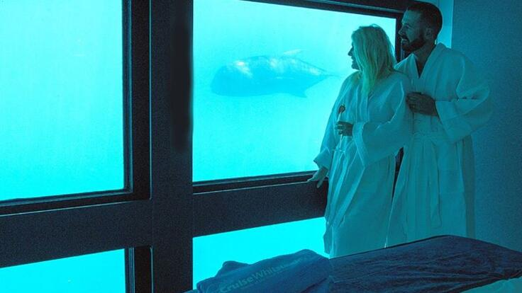 Overnight Sleep on the Great Barrier Reef tour Whitsundays - Underwater Luxury Suite