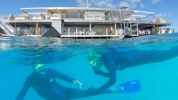 Enjoy the Great Barrier Reef by day and by night | Sleep On The Reef