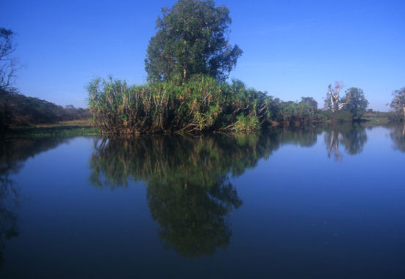 Cape York Waterholes and scenery