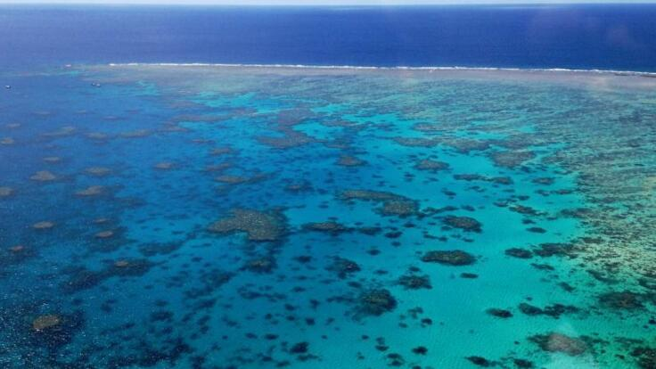 Great Barrier Reef Scenic Flights - Aerial View of the Reef