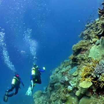 Become a certified diver on the Great Barrier Reef