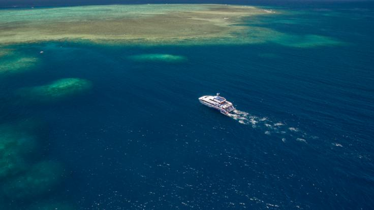 A fast catamaran ride to the best coral reef locations on the Great Barrier Reef