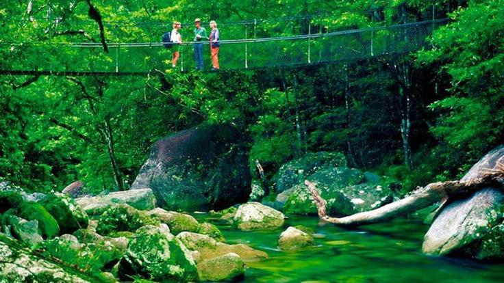 Visit the Mossman Gorge Centre