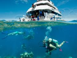 Cairns Scuba Diving Tour on The Great Barrier Reef
