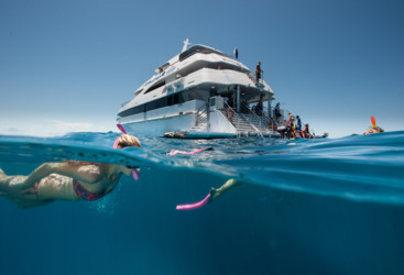 VIP Great Barrier Reef Tour - Boat and Snorkeler in Cairns