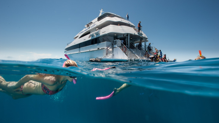 Cairns Reef Tours - VIP Great Barrier Reef Tour - Boat and Snorkeler in Cairns