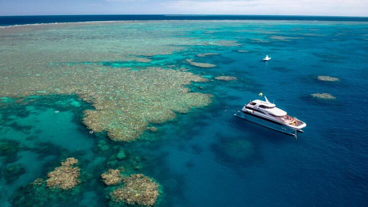 Luxury Reef Trips From Cairns to the Outer Reef - Admirals Club