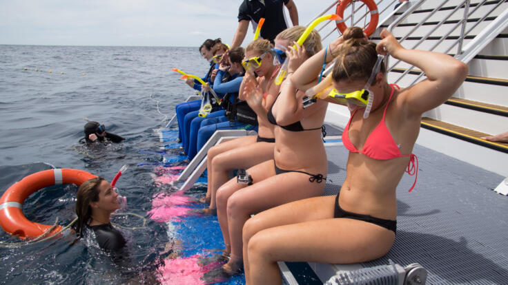 Cairns Reef Tours - Snorkellers on Aft Deck