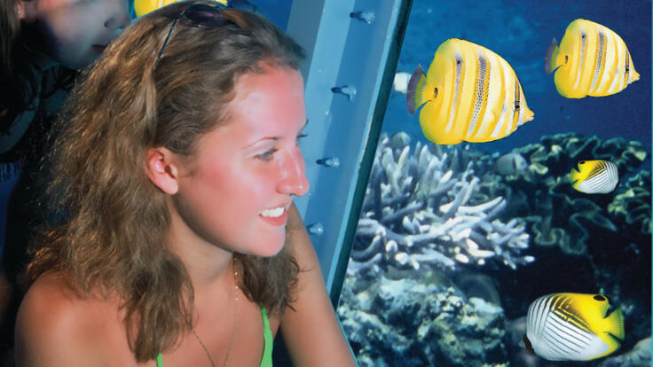 Cairns Reef Tours - Semi - Submersible Submarine Tour