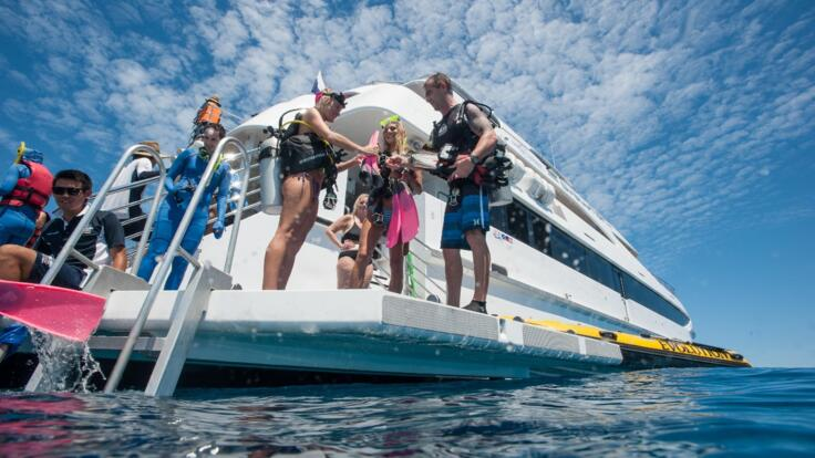 Cairns Dive Tours Great Barrier Reef