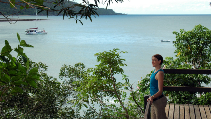 Daintree Rainforest Boardwalks and scenic lookouts