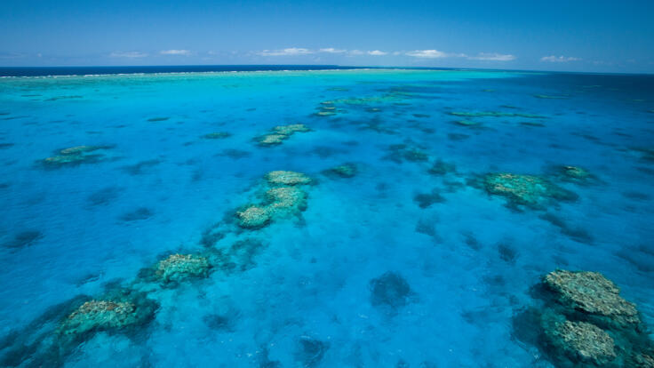 Great Barrier Reef Superyacht Charters - Coral Reef - TEQ
