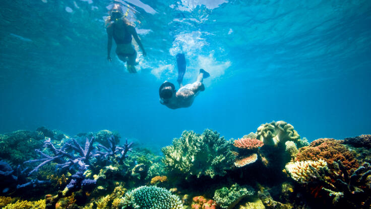 Superyacht Holidays Great Barrier Reef - Snorkel the Ribbon Reefs - TEQ