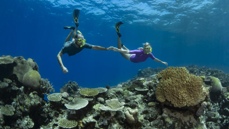 Superyacht Charters Port Douglas - Snorkel the Great Barrier Reef - TEQ