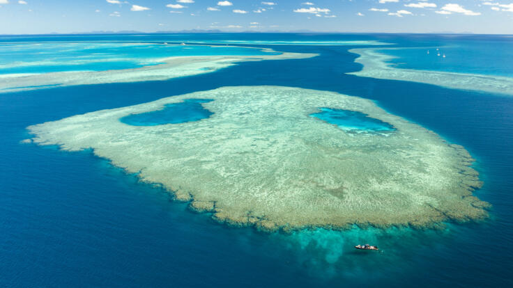 Yacht Charter Port Douglas - Ribbon Reefs - Great Barrier Reef - TEQ