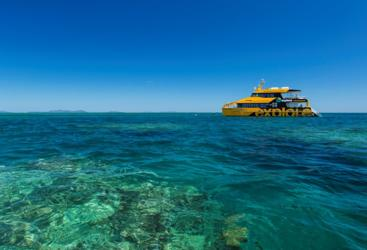 Dive and Snorkel the Great Barrier Reef from Airlie Beach