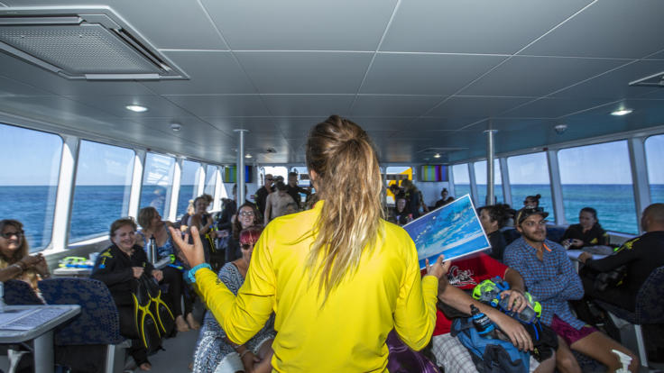 Knowledgeable staff onboard to ensure you not only see the Great Barrier Reef but learn about it