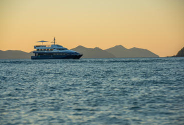 Hamilton Island Dinner Cruise at Sunset