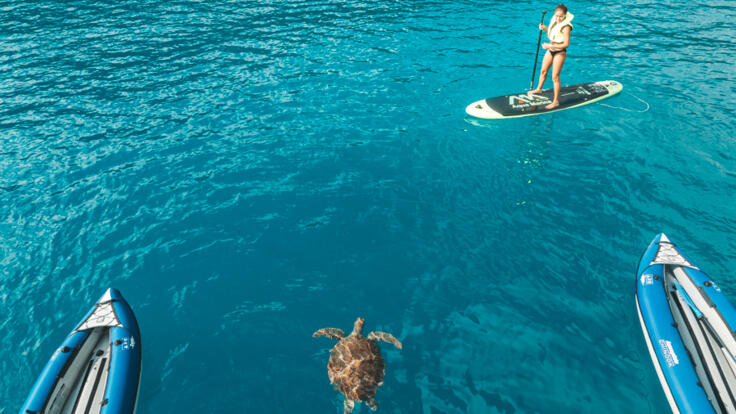 Yacht Charters Whitsundays - Stand Up Paddle Boards