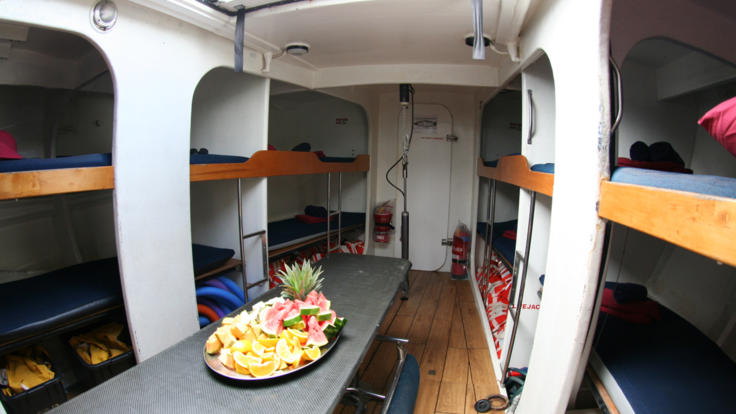 Whitsundays sail boat interior bunk accommodation
