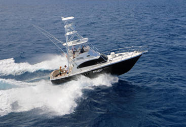 Port Douglas Charter Boat |Fishing charter aboard the Ultimate game boat