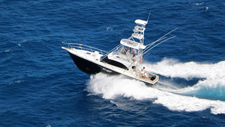 Luxury Charter Boats Port Douglas | Snorkeling | Diving | Fishing