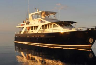 Experience the Great Barrier Reef on a Luxury Private Charter Yacht from Port Douglas