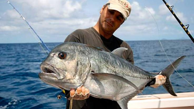 Land a hard-fighting Giant Trevally