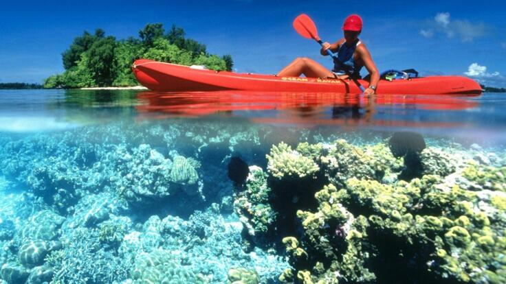Port Douglas Charter Boats - Private Snorkel Tours - Fishing Tours - Kayaking Great Barrier Reef