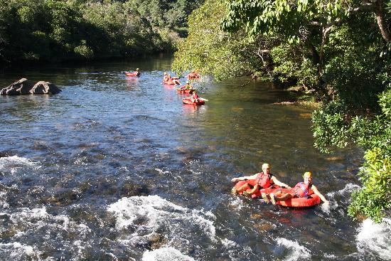 Enjoy the views to tropical rainforest while floating down the Mulgrave River White Water Rapids