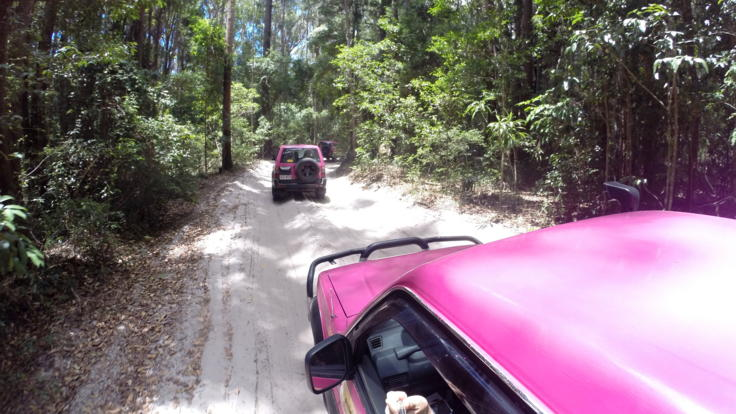 Barrier Reef Australia: 4WD tour through the rainforest - Fraser Island.
