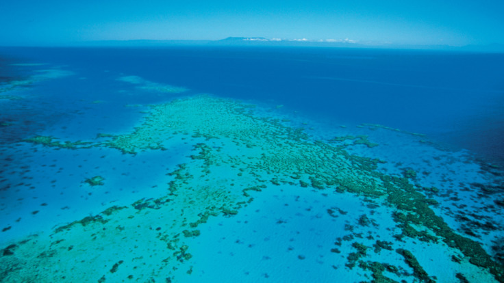 Great Barrier Reef Scenic flights - solitary sand cay Cairns Queensland Australia