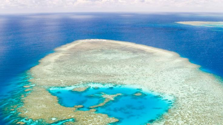 Aerial view of the Great Barrier Reef from helicopter in Australia