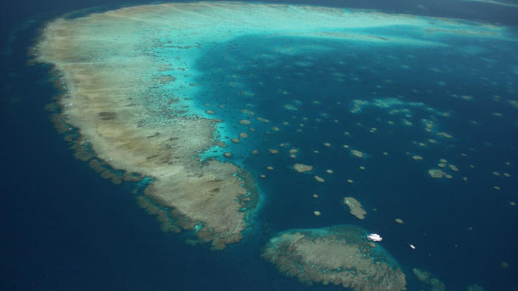 Aerial view of the Great Barrier Reef in Cairns from helicopter