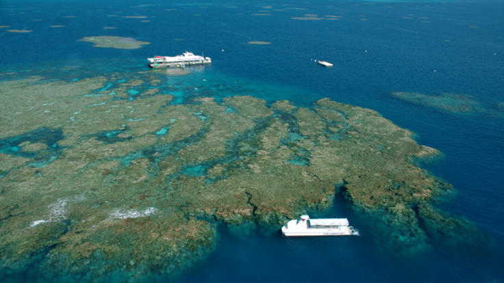 Outer Great Barrier Reef Tour Pontoon from Cairns