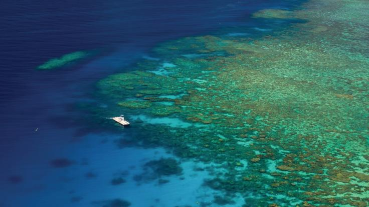 Barrier Reef Australia: Take a scenic helicopter flight over the Great Barrier Reef