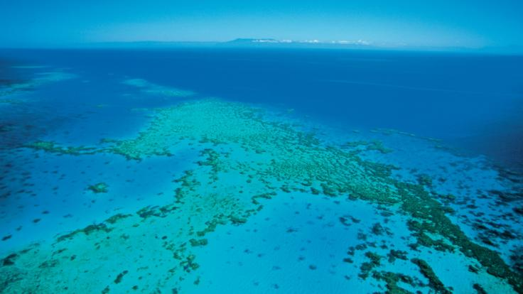 View from Helicopter over the Great Barrier Reef