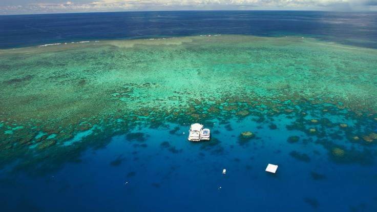 aerial view of the Great Barrier Reef pontoon from helicopter