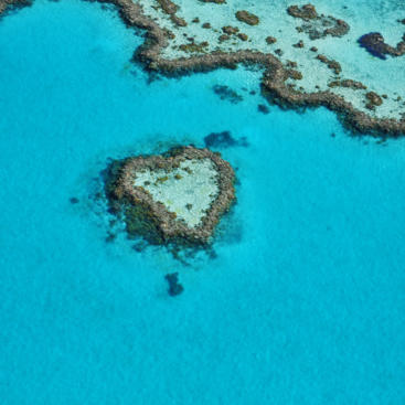 Heart Reef Scenic Flight in the Whitsundays on the Great Barrier Reef in Australia