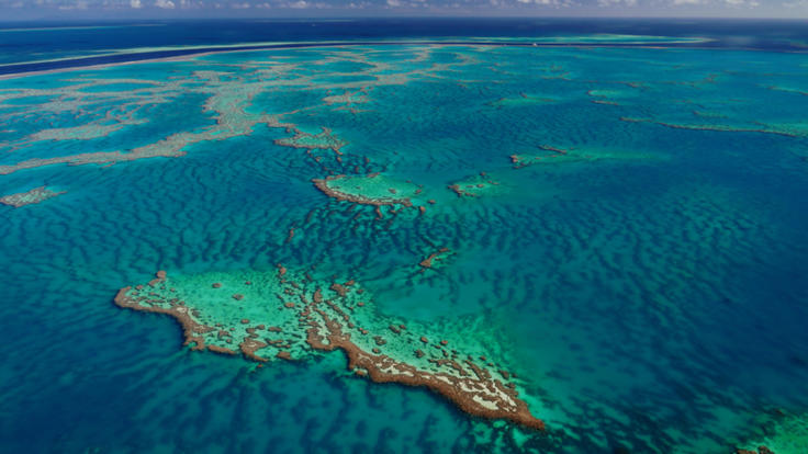 Aerial View of the coral on the Great Barrier Reef