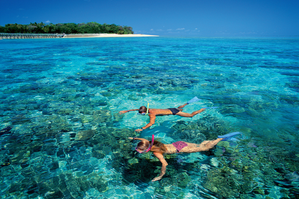 Snorkelling on Green Island, Great Barrier Reef - Fly & Cruise Tour