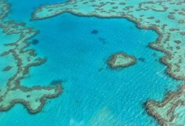 Aerial Shot of Heart Reef Whitsundays - Great Barrier Reef Australia