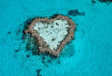 Heart Reef Whitsundays - Helicopter Flight Heart Reef - Whitsunday Islands - Great Barrier Reef Australia