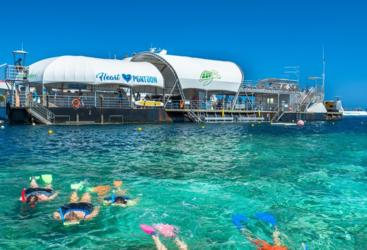 Snorkel at Reef World Pontoon - Whitsundays Great Barrier Reef Australia