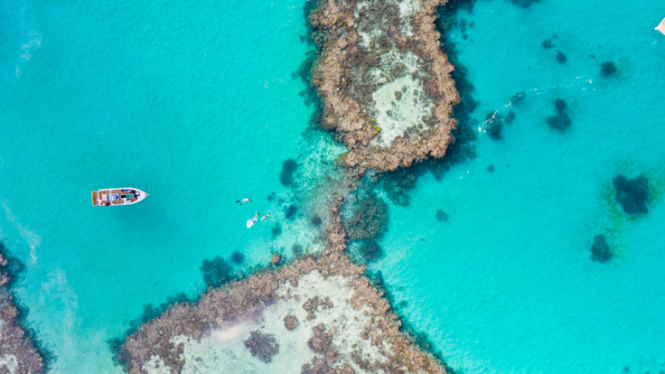 Heart Reef Whitsundays - Aerial view of coral