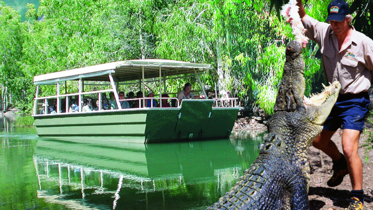 Crocodiel lagoon cruise at Hartley's Crocodile Adventures