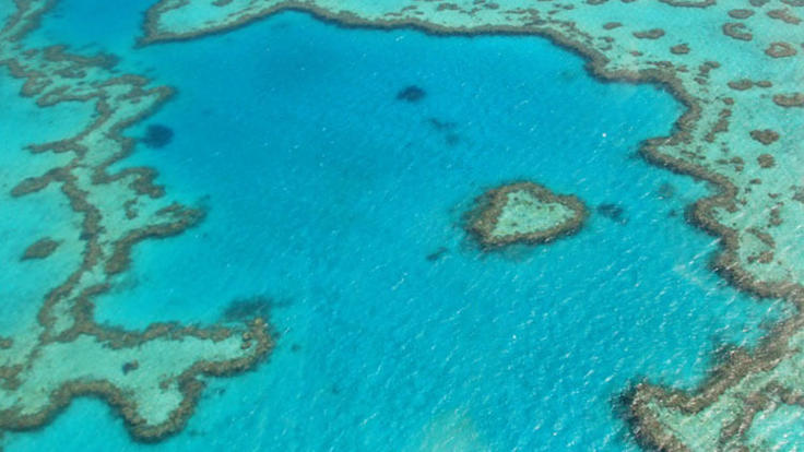 View heart reef from above on your Whitsunday scenic flight