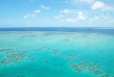 See the Great Barrier Reef from above in a helicopter from Horn Island Torres Strait