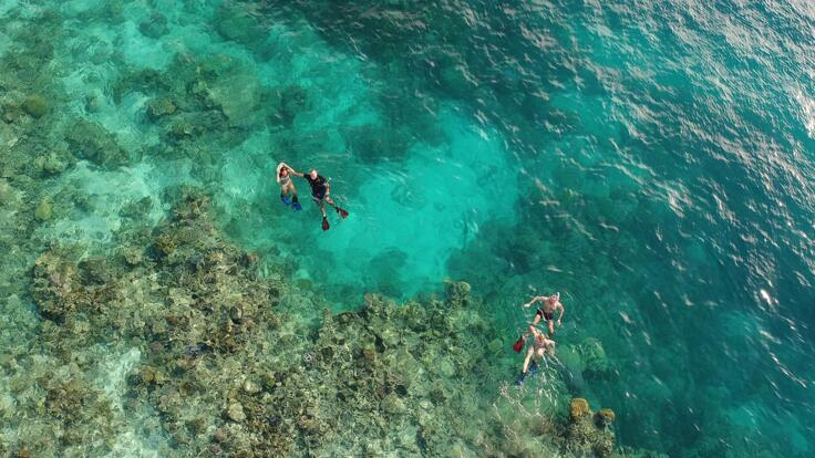 Yacht Charters Great Barrier Reef - Snorkel the Reef